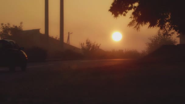 The car goes towards the sun in the early morning