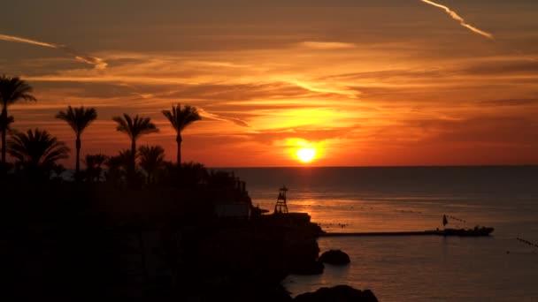 Na pobřeží za svítání