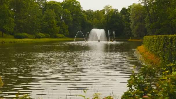 Jezírko s fontánou mezi stromy
