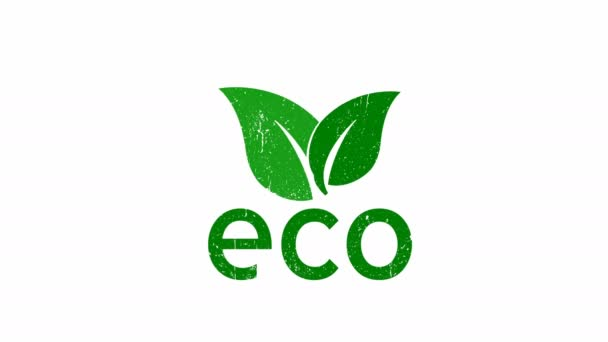 Ecology concept. Green leaf. Pollution problem. Environmental protection. Save the world. Zero waste. 4K video