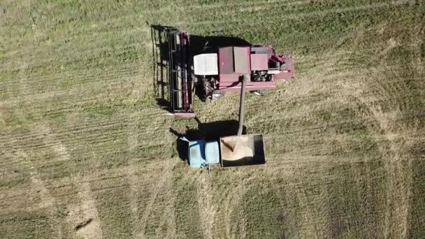 Vzdušný pohled na plnící proces během zemědělské práce. Sklízecí komizátor nažente Korny na náklaďák v terénu. Penza, Ruská federace.