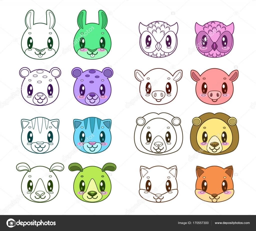 Facce Di Animali Divertenti Vettoriali Stock Lilu330 170557300