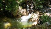 cascata nella foresta tra le rocce