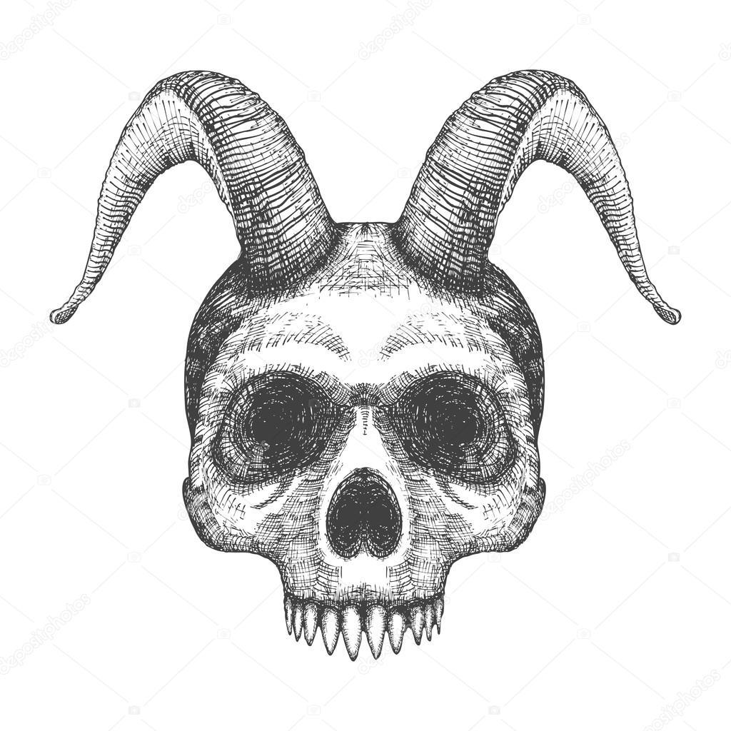Cráneo humano con cuernos de chivo — Vector de stock © goldenshrimp ...