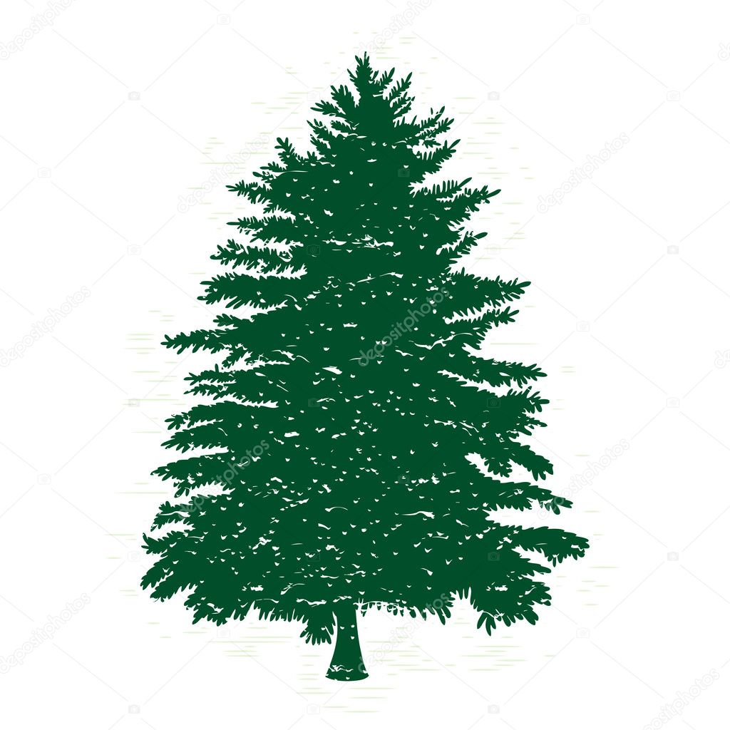 ᐈ Silhouettes Of Pine Trees Stock Photos Royalty Free Pine Tree Silhouette Images Download On Depositphotos