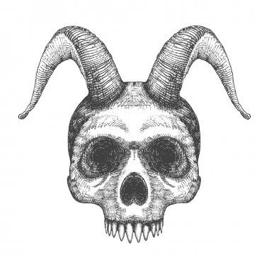 Human skull with goat horns sketch
