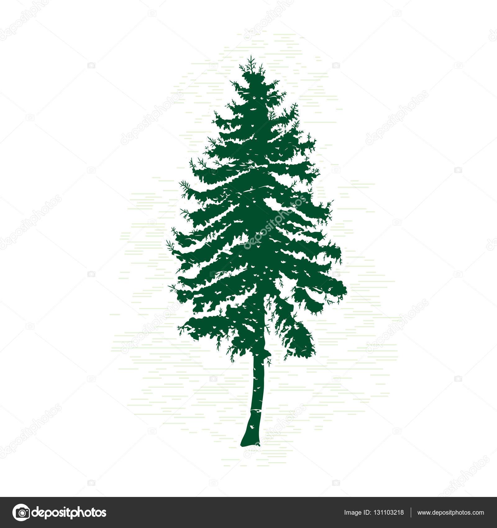 silueta de árbol de pino — Fotos de Stock © goldenshrimp #131103218