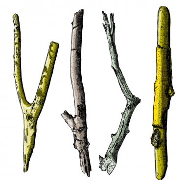 Hand painted wood twig set