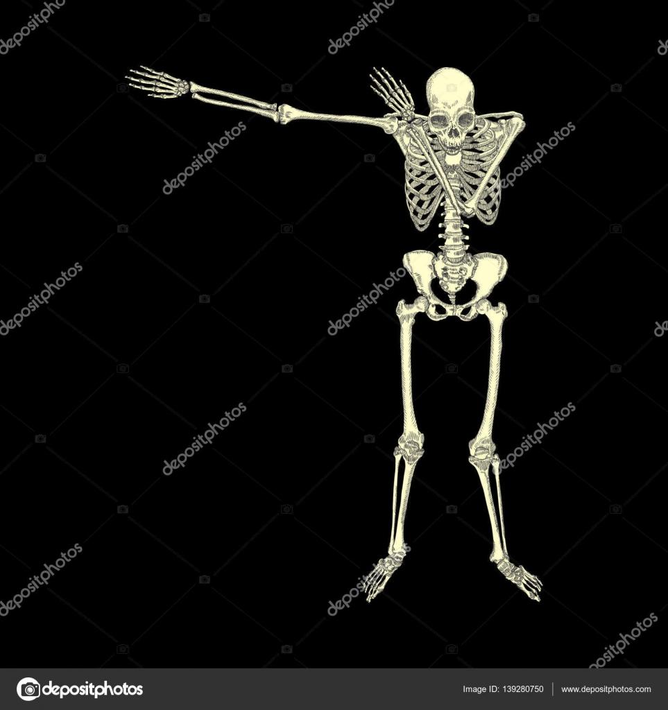 Squelette humain danse — Image vectorielle goldenshrimp © #139280750