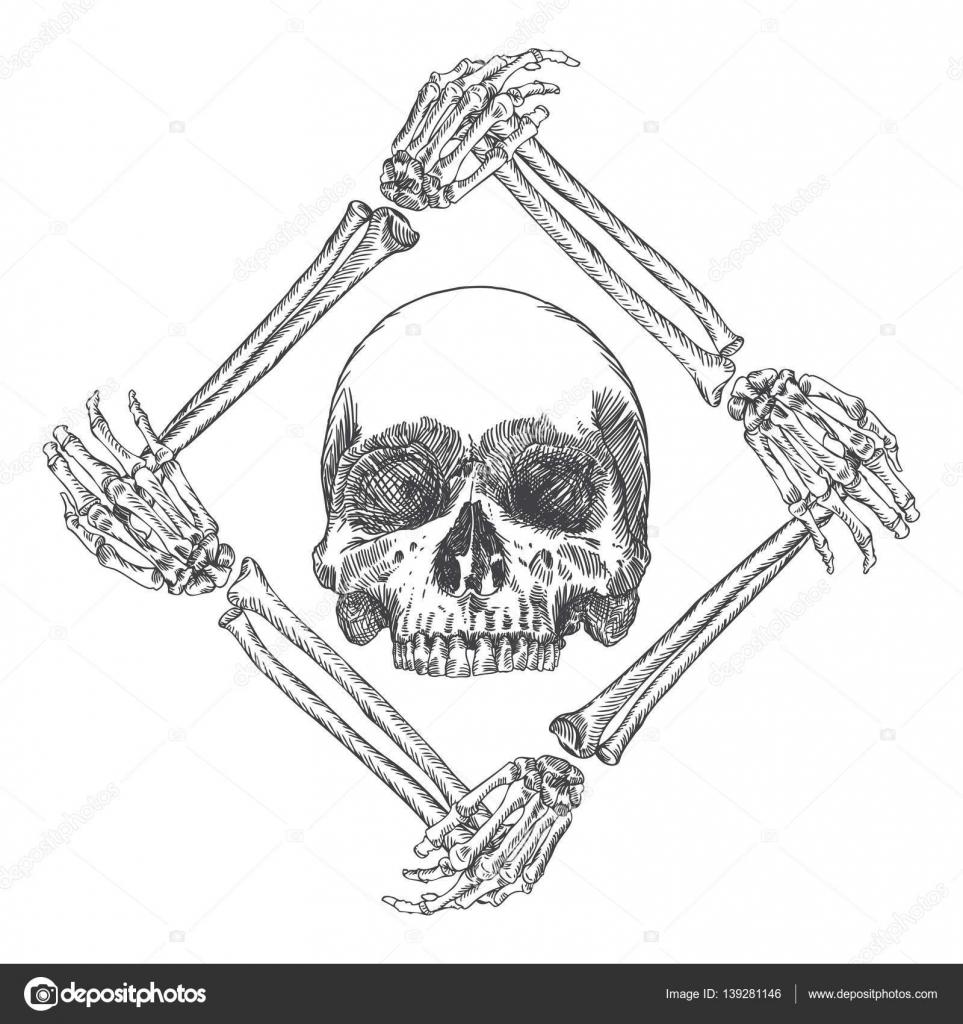 Skull in the frame of hands bones — Stock Vector © goldenshrimp ...