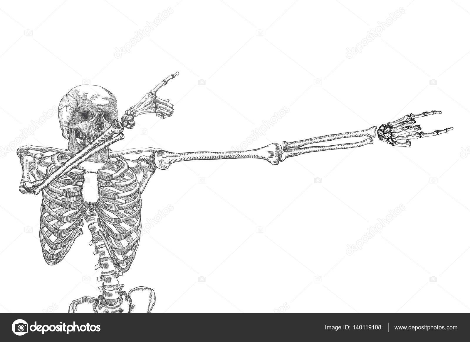 Squelette humain danse — Image vectorielle goldenshrimp © #140119108