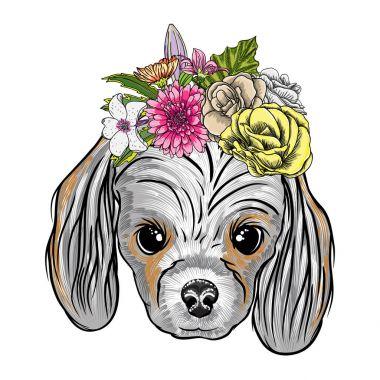 Cocker Spanie puppy illustration