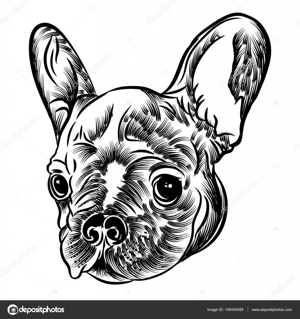 Piccolo cucciolo di bulldog francese vettoriali stock for Piccolo in francese