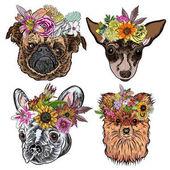 Fényképek Rajzfilm kutyák-val egzotikus virág koszorúk