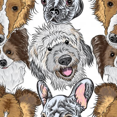 Seamless pattern purebred cute dogs