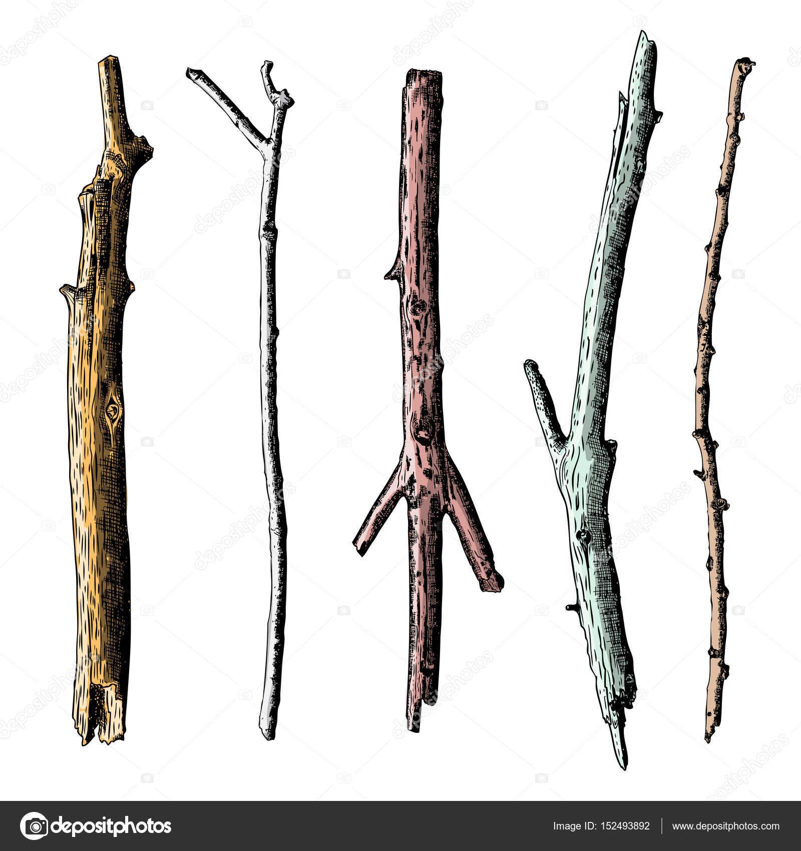 Set of ink drawing wood twigs — Stock Photo © goldenshrimp ...