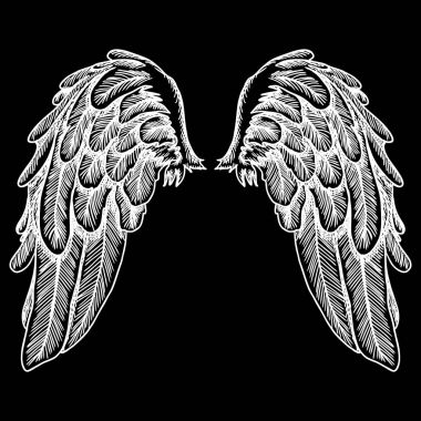 Set of black white bird wings