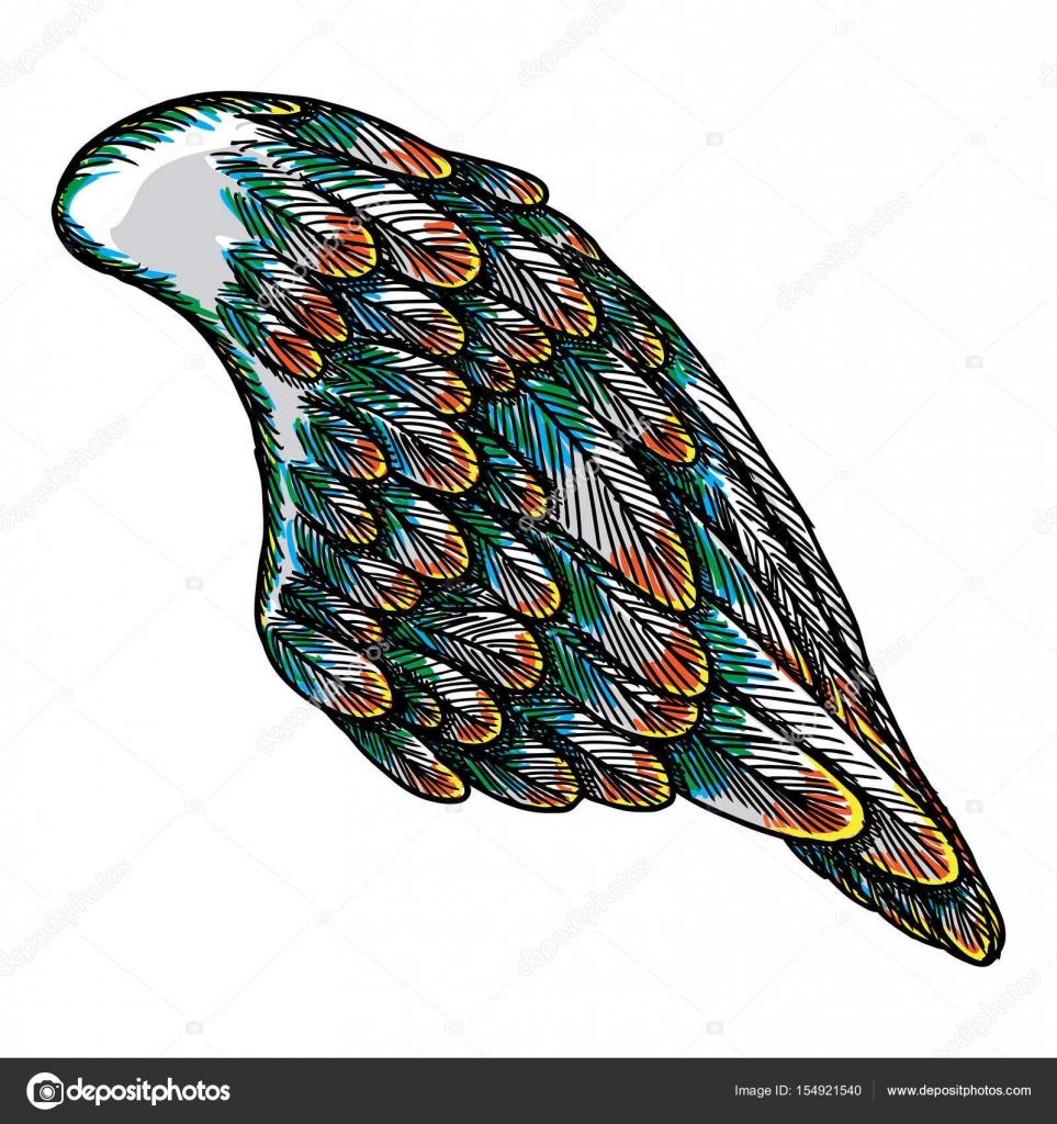 Bunte Flügel zeichnen — Stockvektor © goldenshrimp #154921540