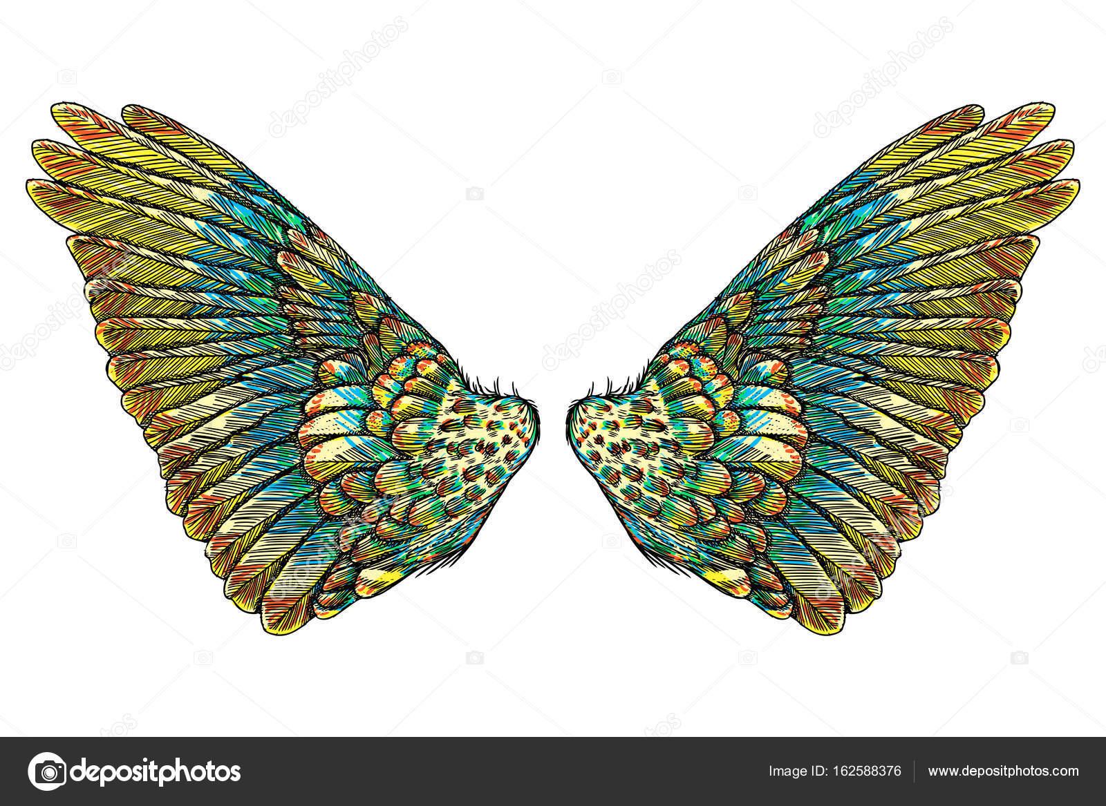 Alas de Ángel o pájaro sagradas — Archivo Imágenes Vectoriales ...