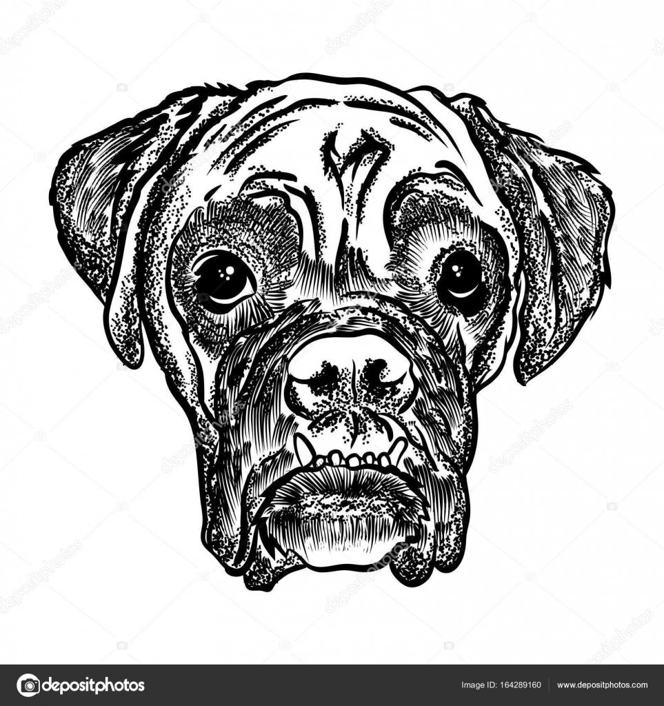 Mandalas De Perritos Para Imprimir Y Colorear Ilustración De
