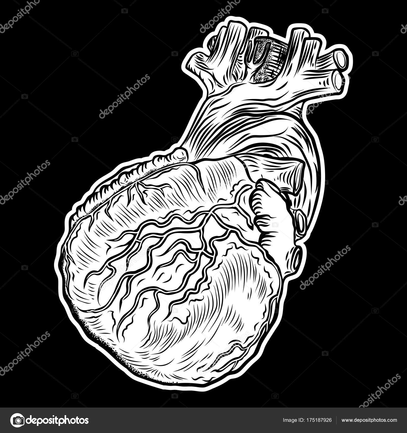Handgezeichnete Fleisch-Tattoo-Konzept von Herzsymbol — Stockvektor ...