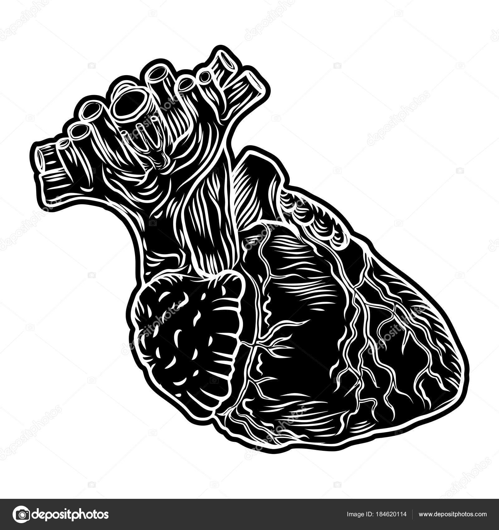 Menschlichen Herzen Hand Gezeichnet Fleisch Tattoo Konzept Der Herz ...
