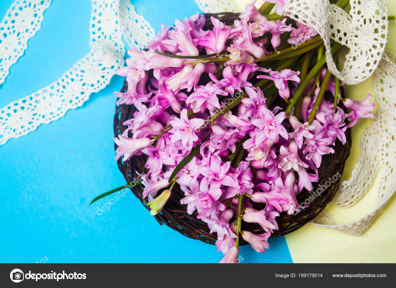 Hyacinth Spring Flowers Arrangement Close Up Stock Photo