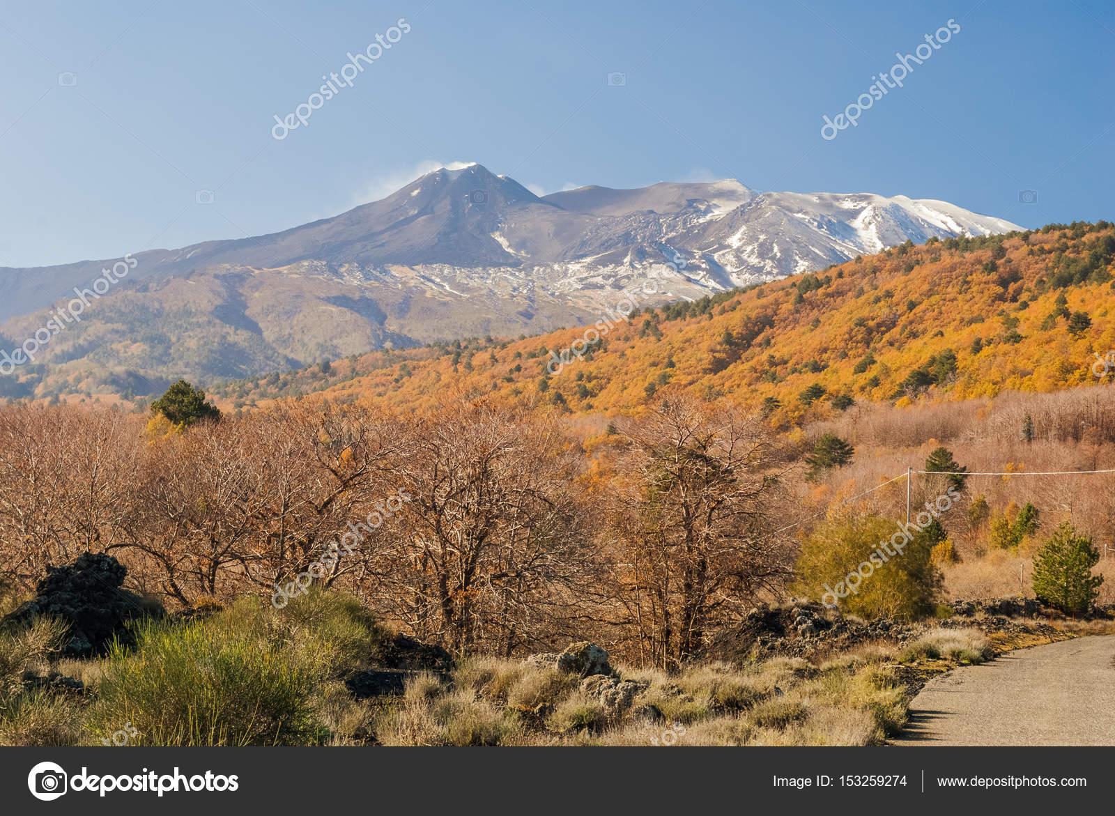 Versante nord orientale del vulcano etna durante il tardo - Immagini del cardellino orientale ...