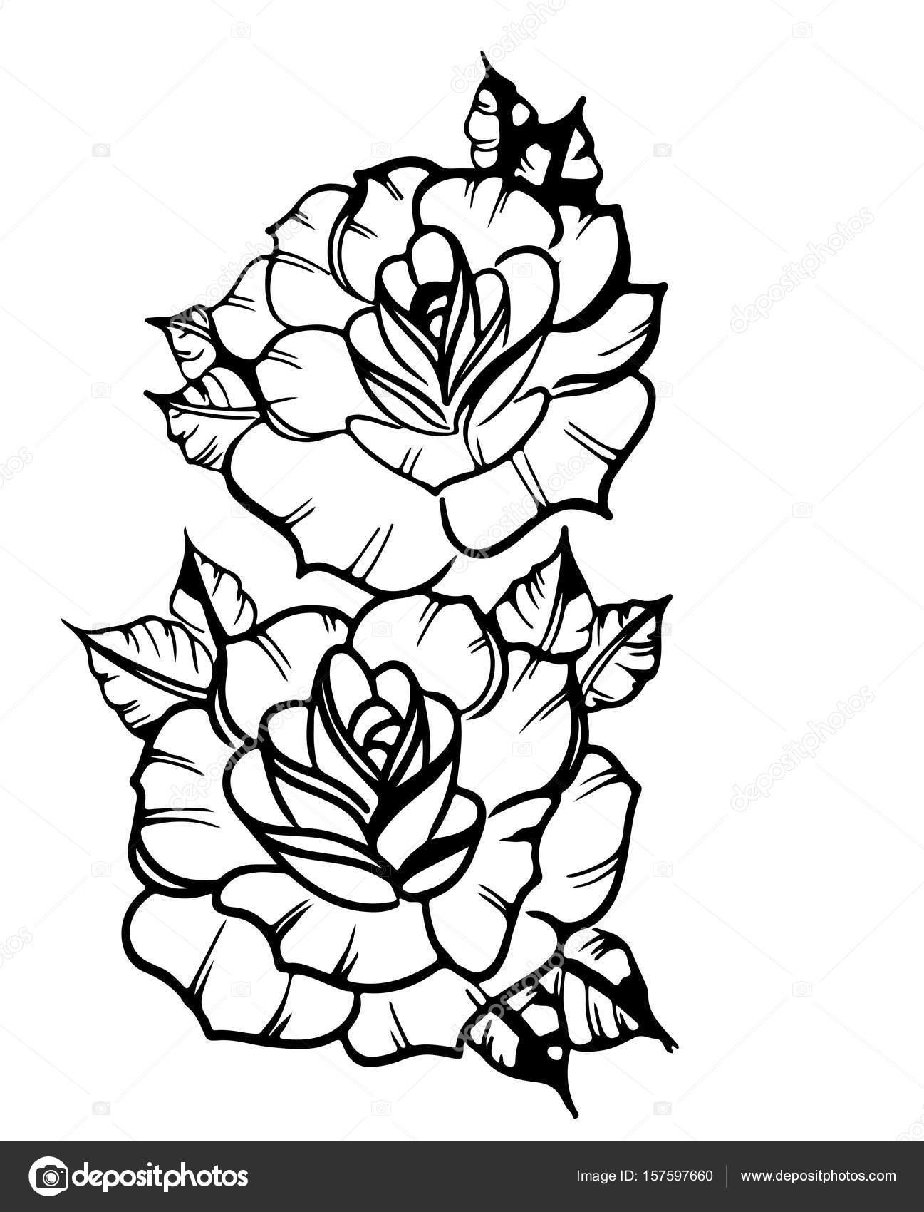 Dwie Róże Szkic Tatuaż Grafika Wektorowa Littlemagic