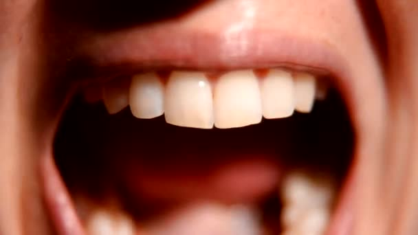 die Zahnbürste reinigt die Zähne