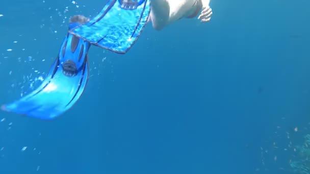 Schnorcheln. ein Mädchen mit Maske und Schlauch schwimmt im Meer