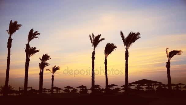 Dawn s mořem. Pláže v Egyptě
