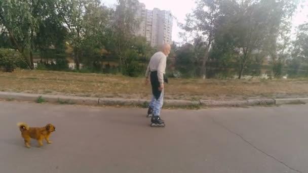 Děda se valí na váleček se psem plemene grifonek