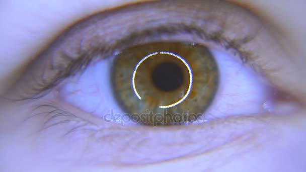 Oko. Ženské oko