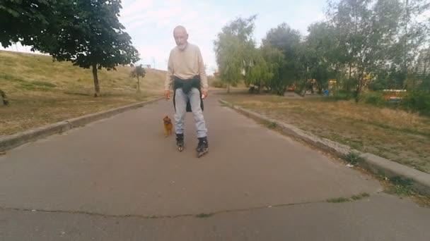 Opa rollt mit Hund der Rasse Gänsegeier auf Roller