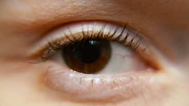 Eye. Female eye. Macro shooting