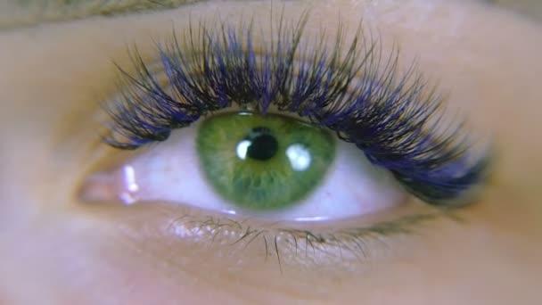 Očí. Zelené oči modré řasy