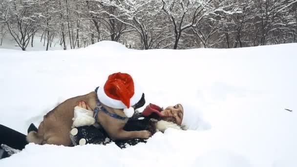 Mops. Pes v hat Santa Claus