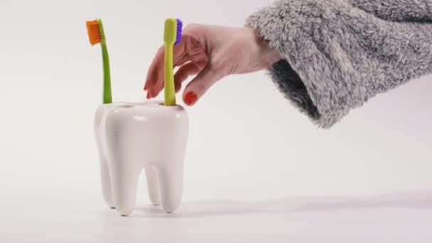 Zahnbürste. Zahnbürsten stehen auf einem Stativ in Form eines großen Zahnes.