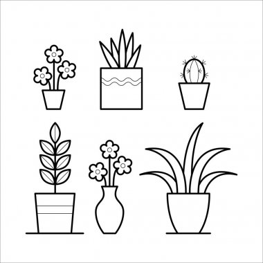 Plants in thin linear style.