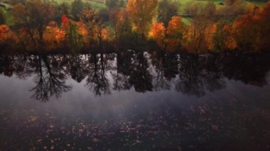 Amazing Autumn scenery, forests with lake, Fall colors, Aerial view. Scenic Aerial of Autumn Colors, Trees, Forests.