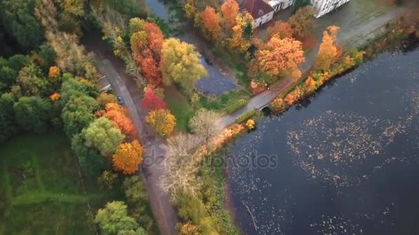Following the path to Castle in autumn Forest. Located in landscape park with green trees forests in autumn. 4K Aerial View.