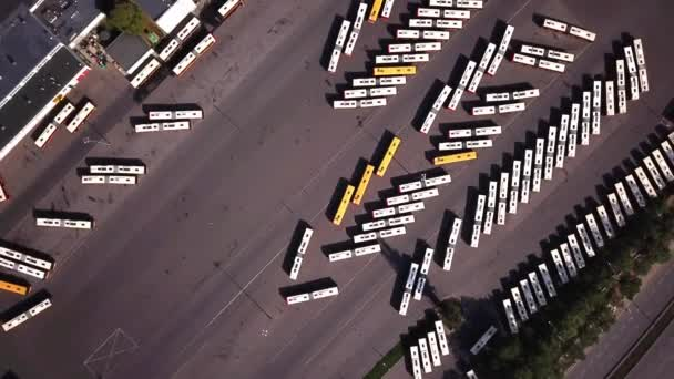 Aerial shot of Transport - bus, bus stop, bus station. Top view. Many bus parked.
