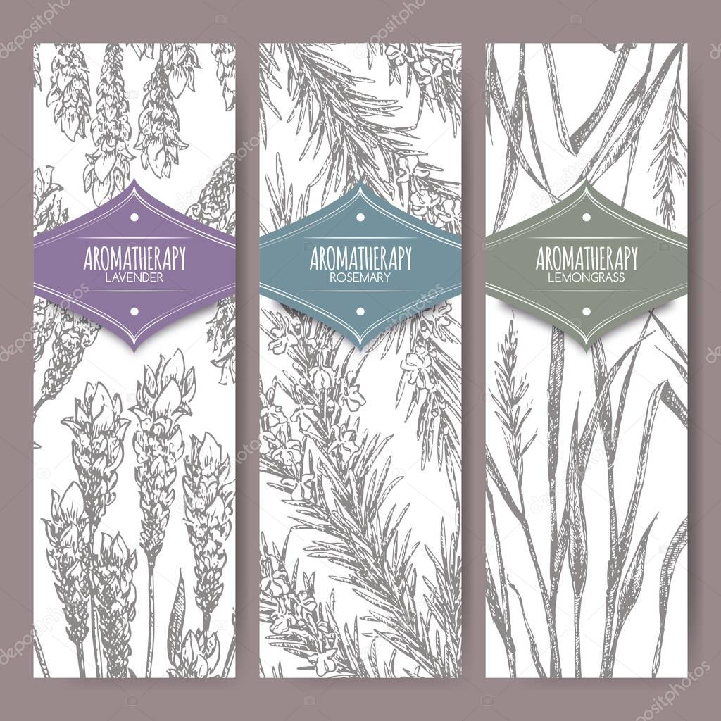 Set of three labels with lavender, rosemary and lemongrass.