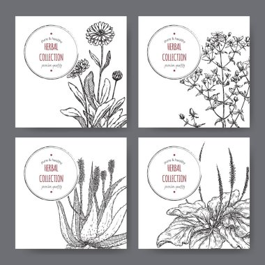 four herbal labels