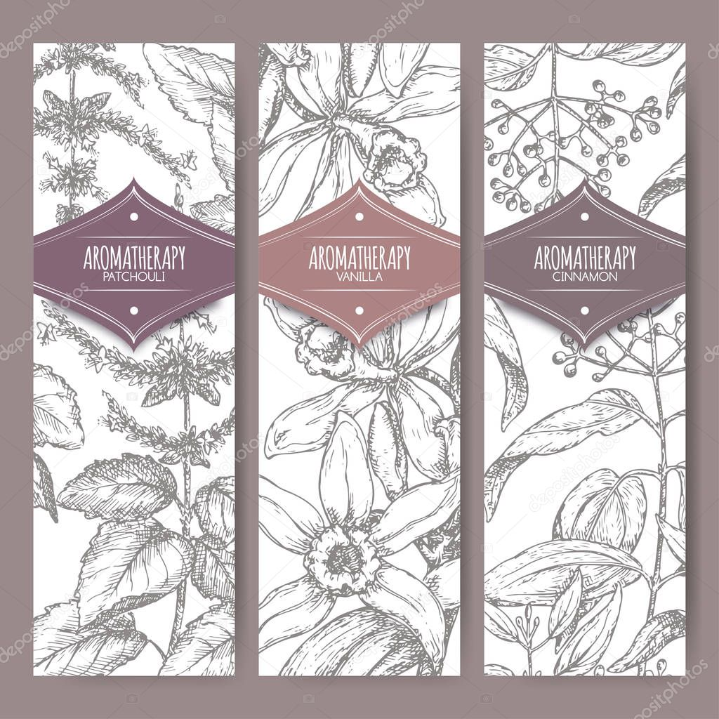 Set of three labels with patchouli, vanilla and cinnamon.
