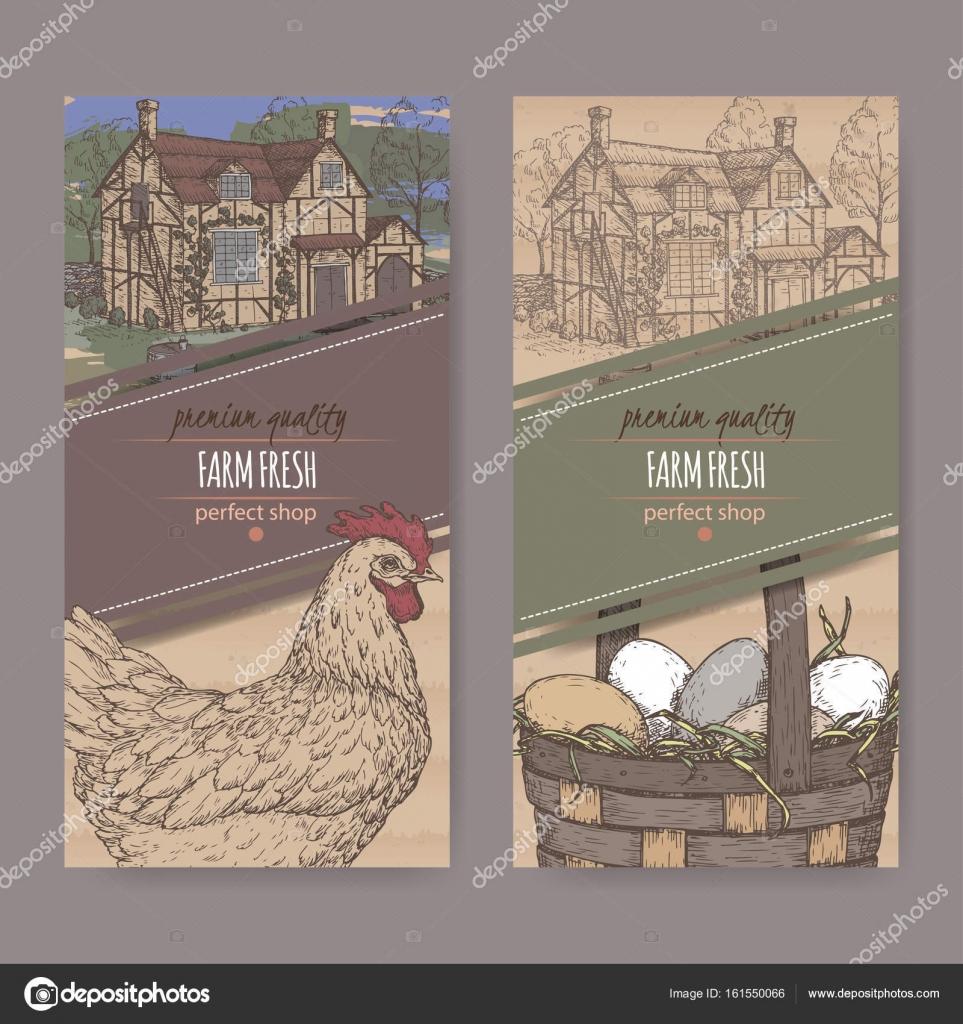 Dos etiquetas de granja tradicional color, pollo y huevos en ...