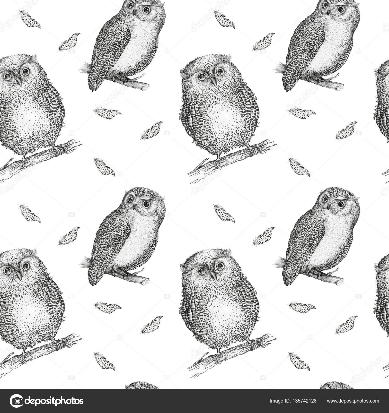 aves volar de buho de patrones sin fisuras — Foto de stock © mykef ...