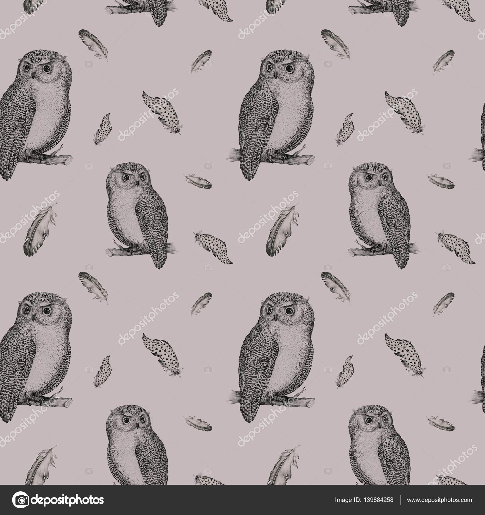 Mano dibujada patrón transparente blanco negro aislado buho pájaro ...