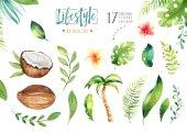 watercolor tropical plants set.